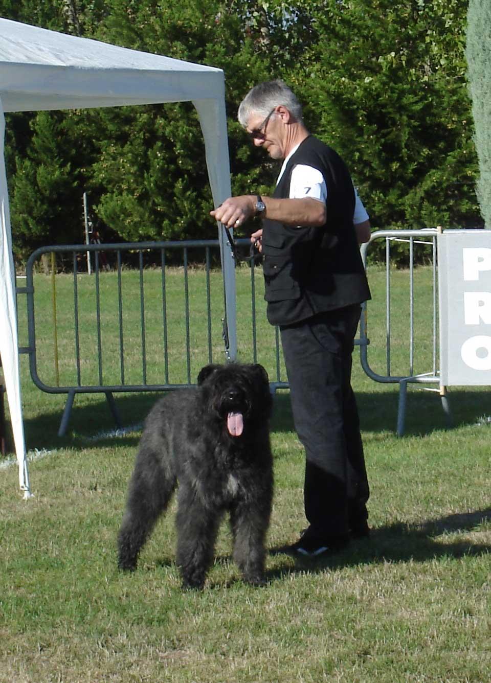 club canin arras 07
